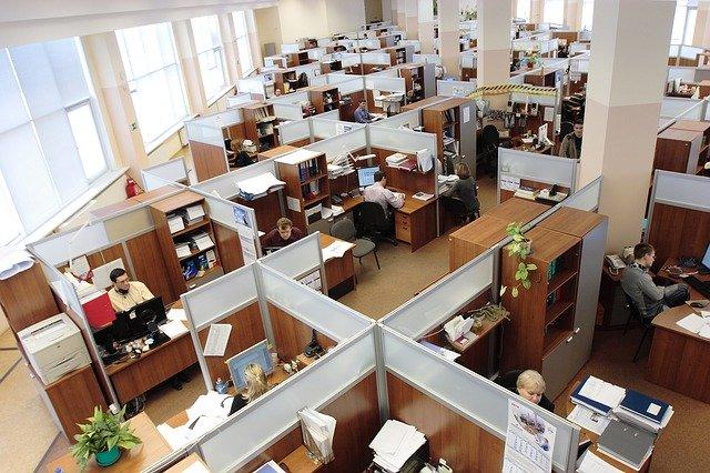 Ministerul Muncii a anuntat regulile pentru revenirea la munca in conditii de siguranta pentru angajati si pentru angajatori